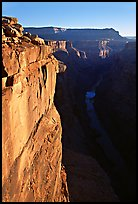 Vertical cliff and Colorado River at Toroweap. Grand Canyon National Park ( color)