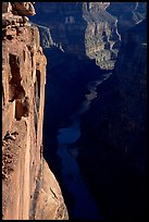 Colorado River and Cliffs at Toroweap, early morning. Grand Canyon National Park ( color)
