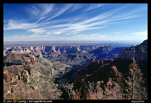 View from Vista Encantada, morning. Grand Canyon National Park (color)
