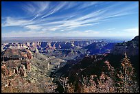 View from Vista Encantada, morning. Grand Canyon National Park, Arizona, USA. (color)