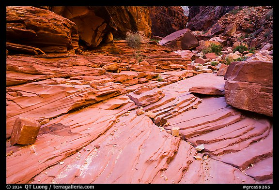 Sandstone terraces, North Canyon. Grand Canyon National Park (color)