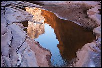 Cliffs reflected in pool, North Canyon. Grand Canyon National Park, Arizona, USA.