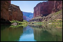 Canyon walls, Colorado River, vegetation, and reflections. Grand Canyon National Park, Arizona, USA.