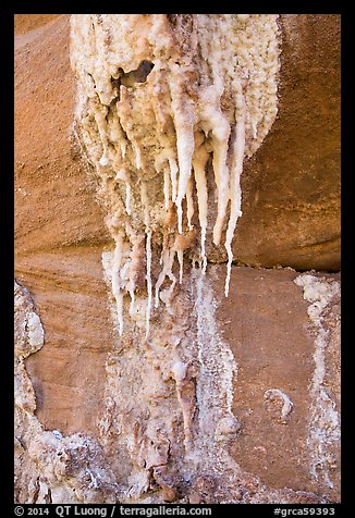 Close-up of salt stalagtites. Grand Canyon National Park (color)