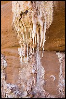 Close-up of salt stalagtites. Grand Canyon National Park ( color)