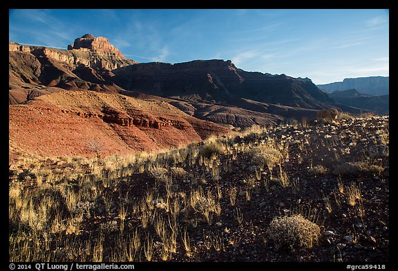 Dark plateau with sparse grasses, early morning. Grand Canyon National Park (color)