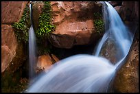 Double spouted waterfall, Clear Creek. Grand Canyon National Park, Arizona, USA.