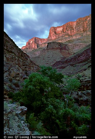 Tapeats Creek, dusk. Grand Canyon National Park (color)