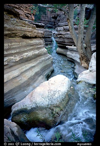 Deer Creek flows into a narrow canyon. Grand Canyon National Park (color)