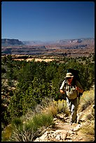 Backpacker on  Esplanade, Thunder River and Deer Creek trail. Grand Canyon National Park, Arizona, USA. (color)