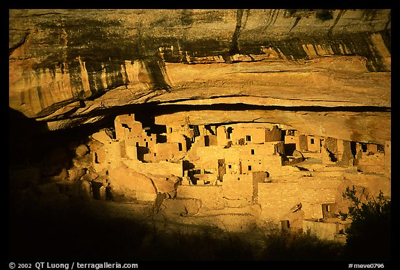 Cliff Palace, largest Anasazi cliff dwelling, afternoon. Mesa Verde National Park (color)