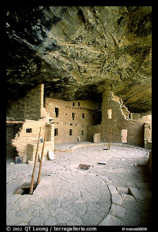 Ladder emerging from Kiva and Spruce Tree house. Mesa Verde National Park (color)