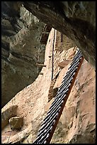 Balcony House ladder, afternoon. Mesa Verde National Park ( color)