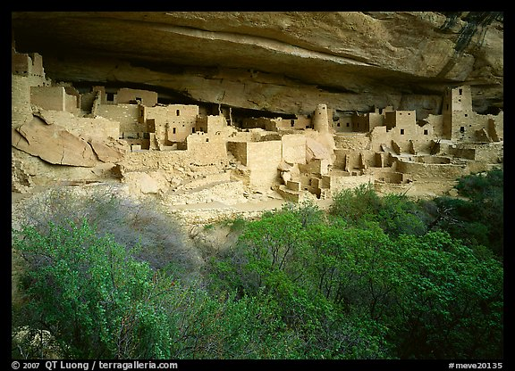 Cliff Palace ruin in rock alcove. Mesa Verde National Park (color)