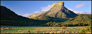Lookout Peak and meadow. Mesa Verde National Park (Panoramic color)