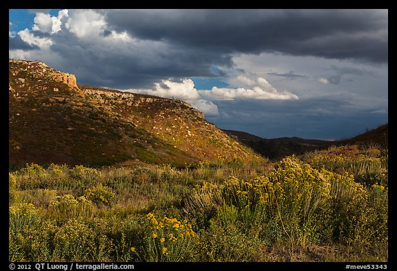 Prater Canyon, afternoon storm. Mesa Verde National Park (color)