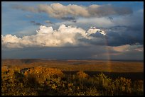 Rainbow and thunderstorm clouds over mesa. Mesa Verde National Park, Colorado, USA. (color)