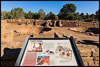 Interpretive sign, Coyote Village. Mesa Verde National Park ( color)