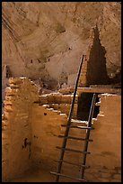 Ladder and ruined walls, Long House. Mesa Verde National Park ( color)