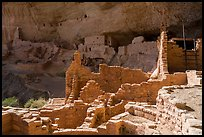 Ruined Anasazi pueblo walls, Long House. Mesa Verde National Park ( color)