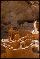 Ruined Ancestral Puebloan walls, Long House. Mesa Verde National Park ( color)