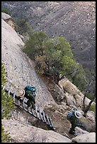 Park rangers descend ladder. Mesa Verde National Park ( color)