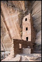 Tower and cliff inside Square Tower House. Mesa Verde National Park ( color)