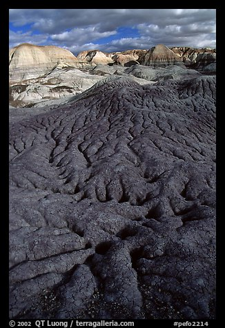 Bentonite and volcanic ash badlands in Blue Mesa, afternoon. Petrified Forest National Park (color)