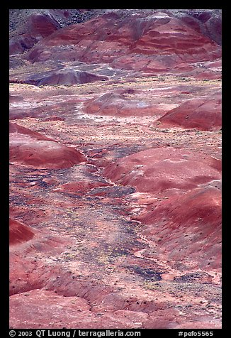 Red hills of  Painted desert seen from Tawa Point. Petrified Forest National Park (color)