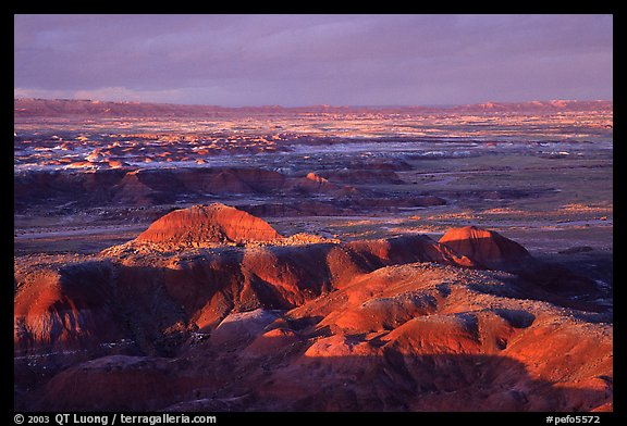 Multi-hued badlands of  Painted desert seen from Chinde Point. Petrified Forest National Park (color)