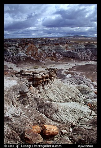 Petrified logs and Blue Mesa, mid-day. Petrified Forest National Park (color)