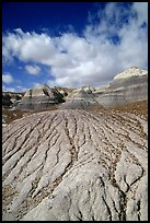 Eroded badlands of  Chinle Formationon, Blue Mesa. Petrified Forest National Park, Arizona, USA. (color)