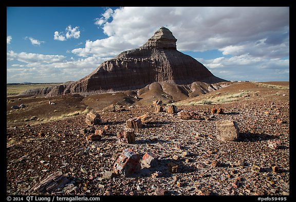 Petrified wood and Salomons Throne. Petrified Forest National Park (color)