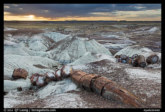 Broken logs of petrified wood at sunset, Crystal Forest. Petrified Forest National Park (color)