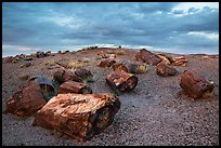 Large petrified wood logs and hill, Crystal Forest. Petrified Forest National Park ( color)