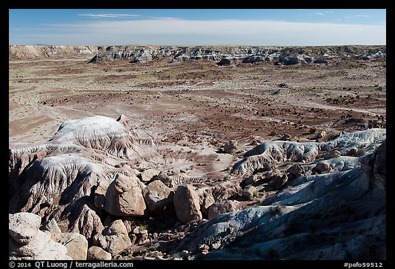 Valley covered with petrified wood, Jasper Forest. Petrified Forest National Park (color)