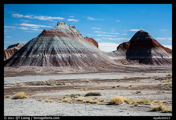 Conical hills carved from blue and red mudstone by erosion. Petrified Forest National Park (color)