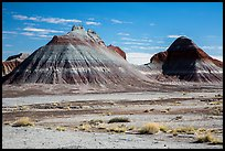 Conical hills carved from blue and red mudstone by erosion. Petrified Forest National Park ( color)