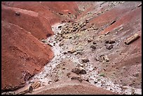 Red badlands filled with petrified wood, Black Forest Wilderness. Petrified Forest National Park ( color)