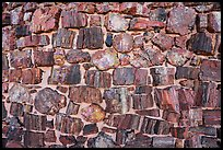 Wall detail, Agate House. Petrified Forest National Park ( color)