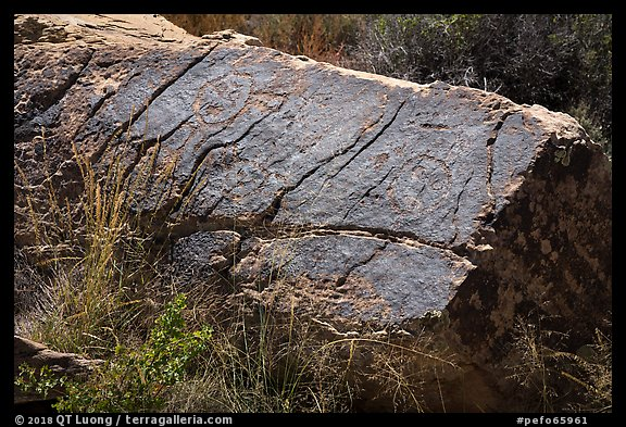 Petroglyphs, Puerco Pueblo. Petrified Forest National Park (color)