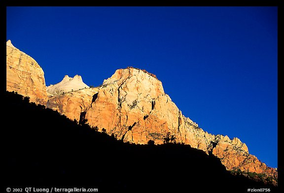 Peaks and shadows. Zion National Park (color)