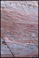 Rock wall with checkboard patterns, Zion Plateau. Zion National Park, Utah, USA. (color)