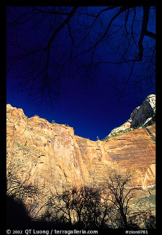 Temple of Sinawava. Zion National Park (color)