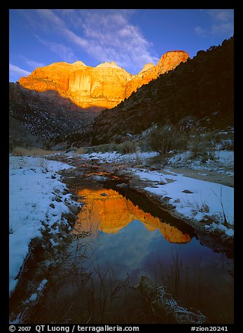 Pine Creek and Towers of  Virgin, sunrise. Zion National Park (color)