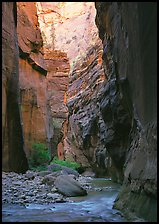 Virgin River and rock walls, the Narrows. Zion National Park ( color)