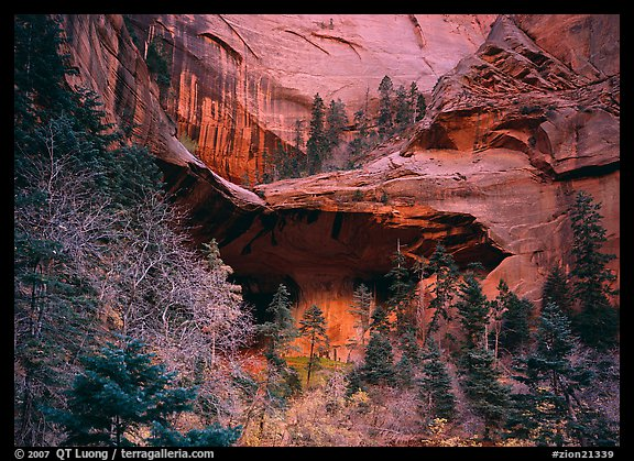 Double Arch Alcove, Middle Fork of Taylor Creek. Zion National Park (color)