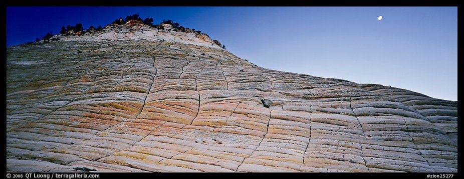 Checkered pattern on Checkboard Mesa. Zion National Park (color)