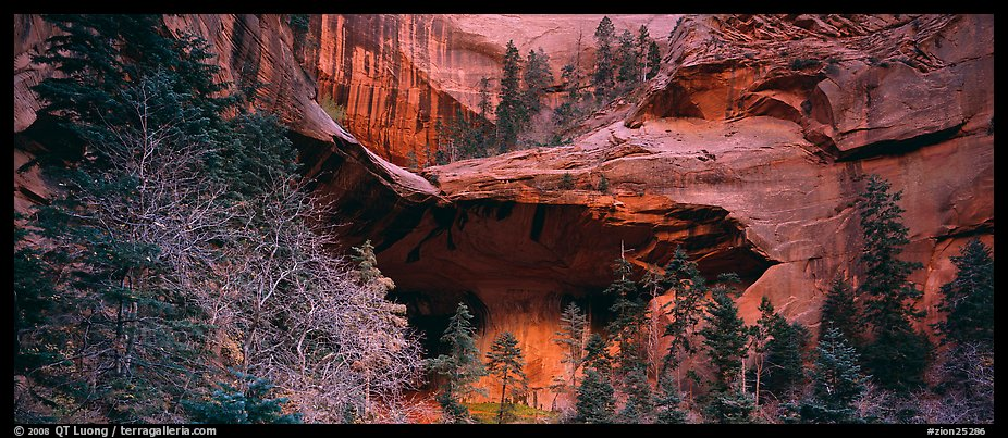 Double Arch Alcove, Kolob Canyons. Zion National Park (color)