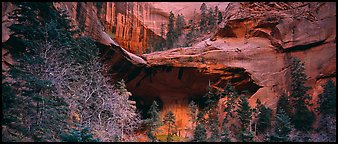 Double Arch Alcove, Kolob Canyons. Zion National Park (Panoramic color)